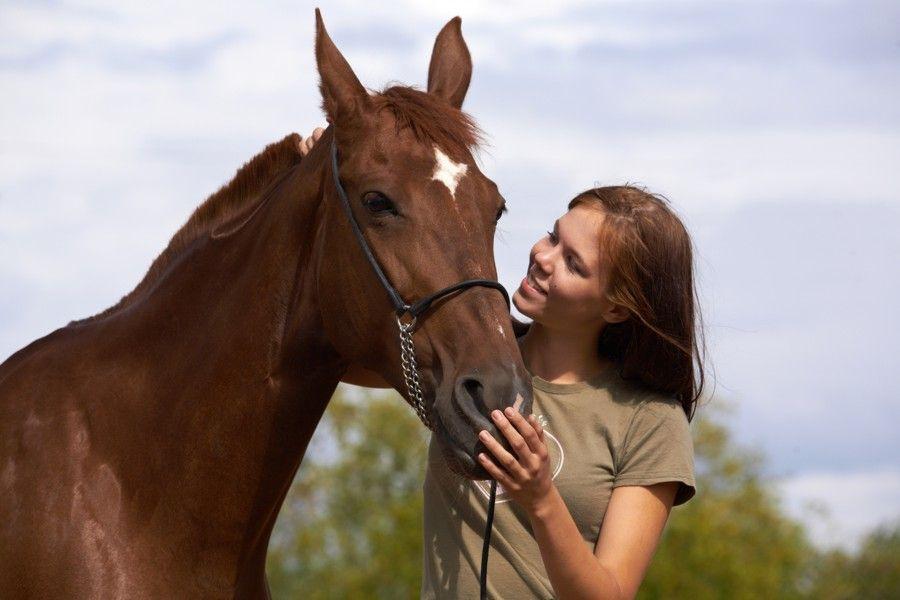 5 ruokavalion vinkkiä lemmikkisi hevoselle kiittää tietämisestäsi